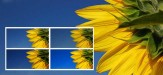 How To Optimize Images For The Web